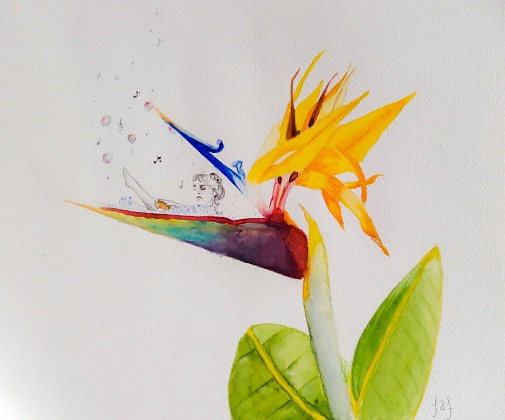 Illustration, art, nature, plants